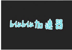 biubiu加速器官网下载 biubiu加速器最新官网下载地址 biubiu加速器破解版下载